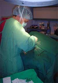 Cruciate_surgery_noblood